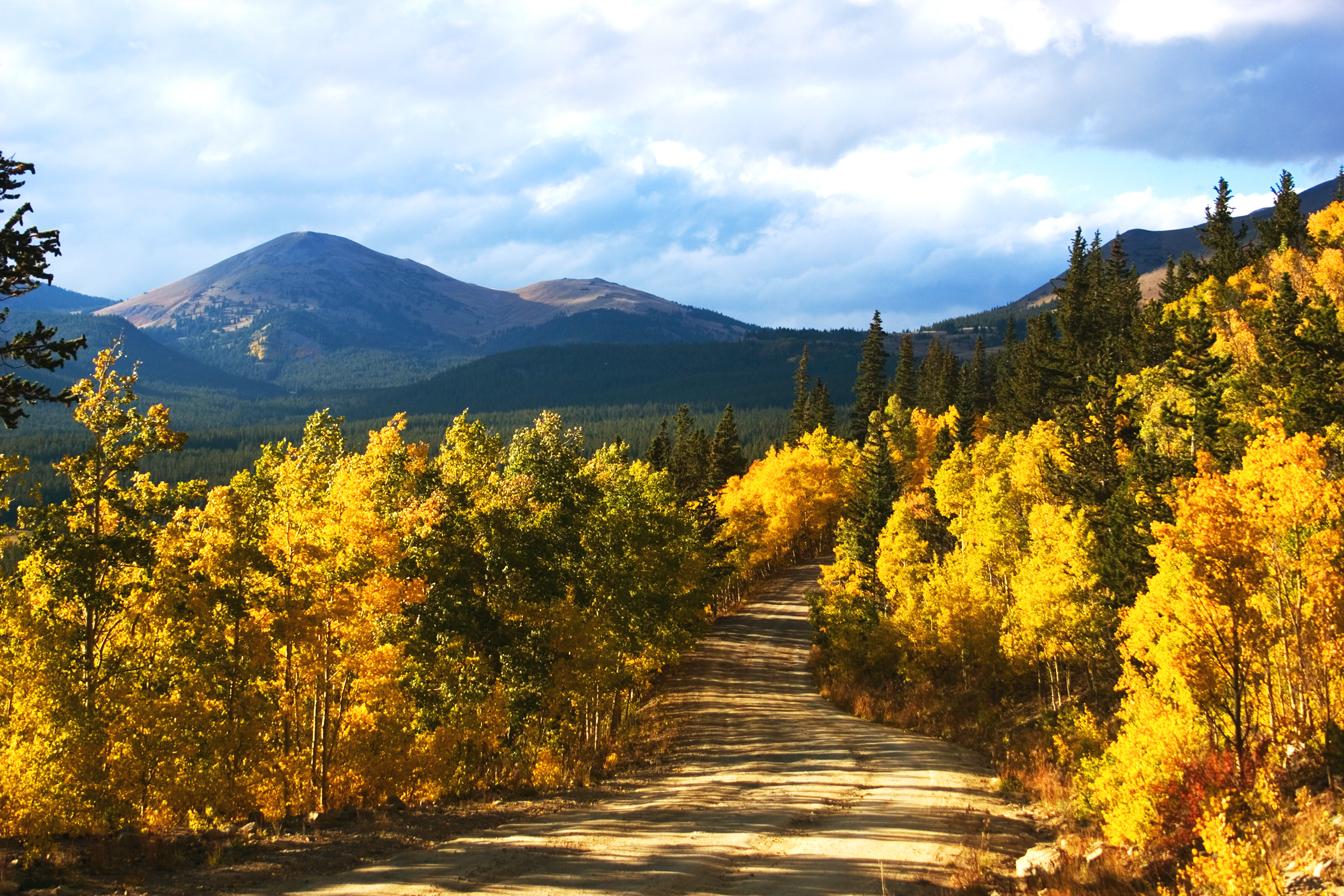 Colorado Wedding Venues- The Mountains are Calling, and I Must Go!